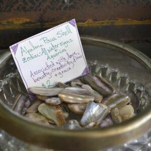 Abalone Paua Shell